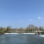 Mapledurham Weir